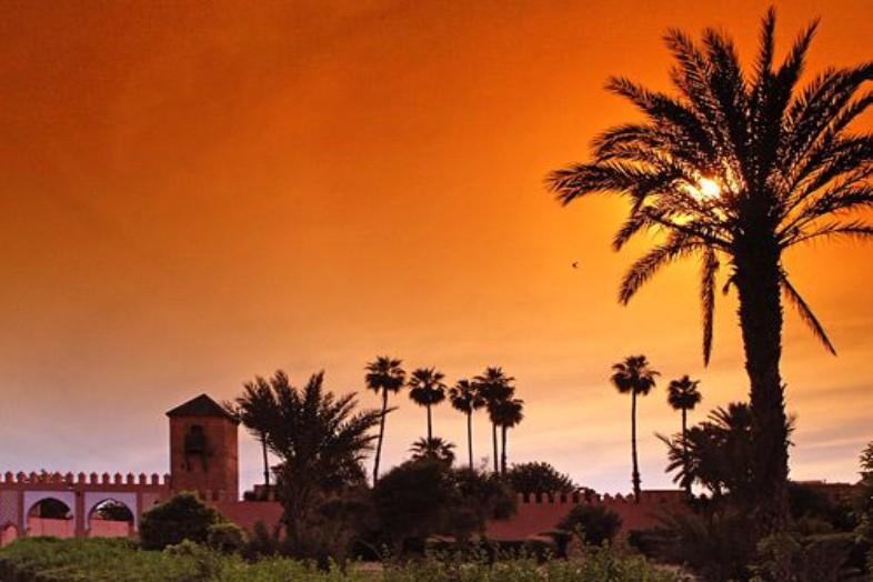 Only Single excursiereis Weekendje Marrakech