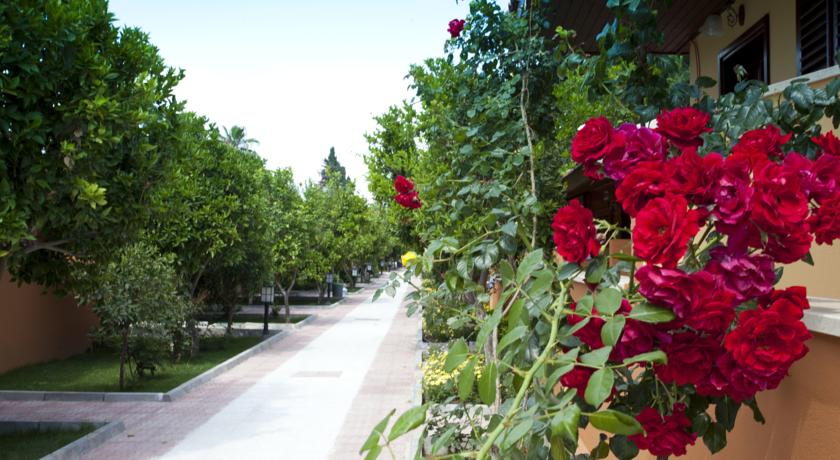 Ozlem Garden